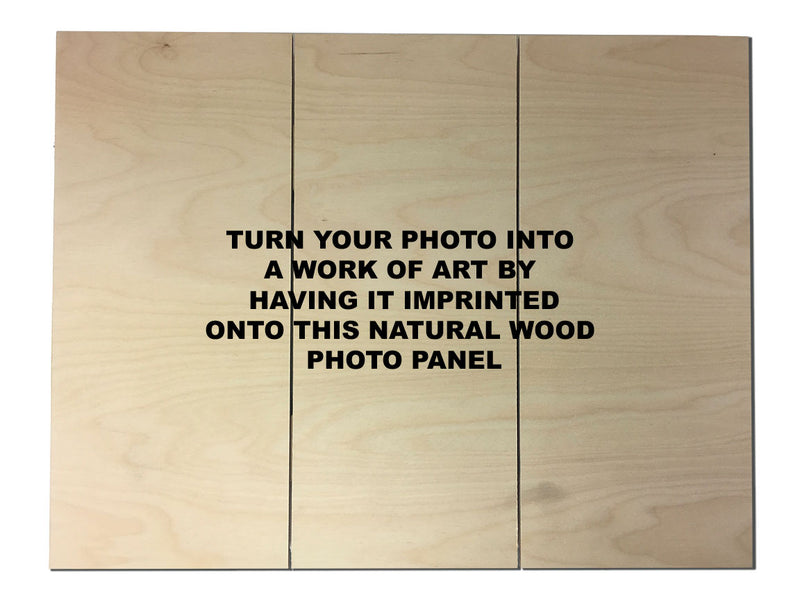 Wood Photo Panel Trio