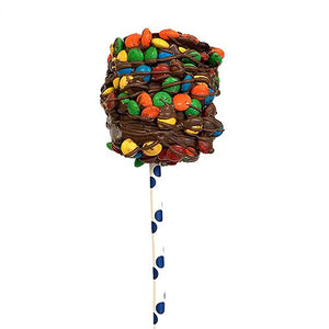 All City Candy Gourmet Milk Chocolate & Candy Coated Jumbo Marshmallow Pop Pretzalicious All City Candy M&M's For fresh candy and great service, visit www.allcitycandy.com