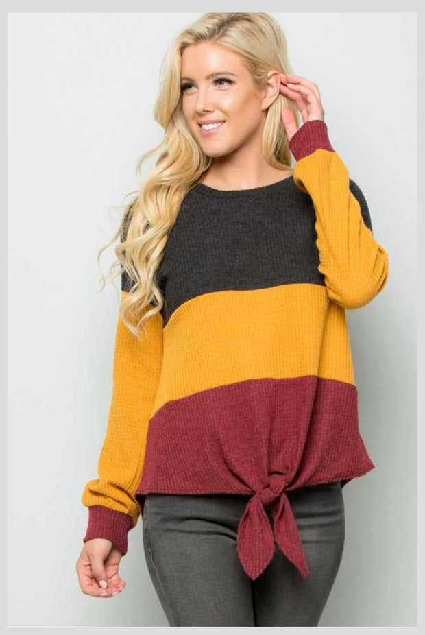 CP-M {Sentimental Heart} Colorblock Knit Top with Tie Front Extended Plus Size SALE!!