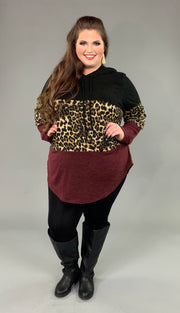 HD-O {Meant For You} Burgundy Leopard Contrast Knit Hoodie CURVY BRAND EXTENDED PLUS SIZE 3X 4X 5X 6X