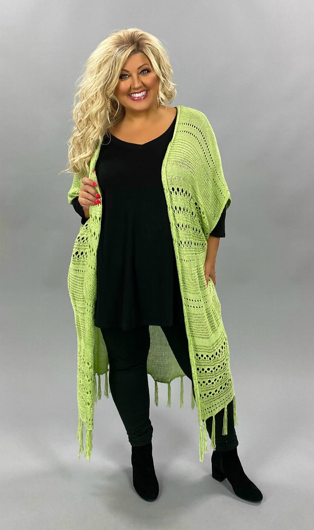 OT-D (Sage Advice} Lt. Green Sweater With Fringe Detail & Back Lace Insert PLUS SIZE 1X 2X 3X