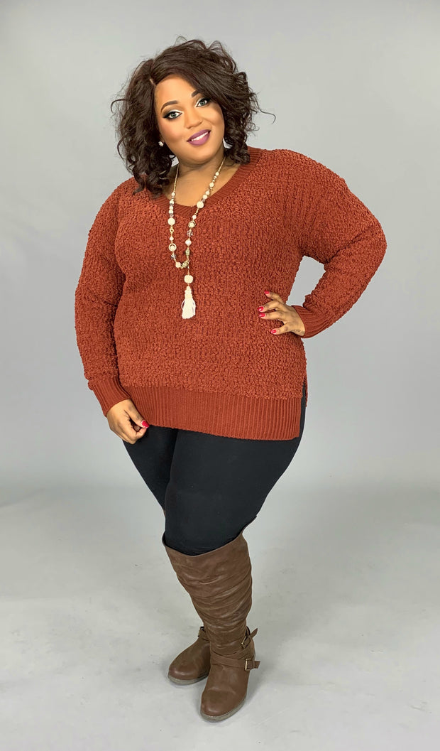 SLS-B {My Best Life} Rust Cable Popcorn V-Neck Sweater  SALE!!