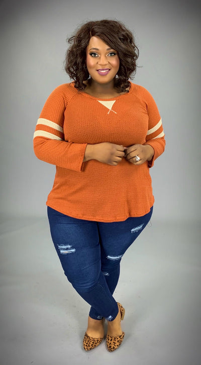 CP-R {Carefree Charm} Rust Waffle Knit Top with Stripes Extended Plus  SALE!!