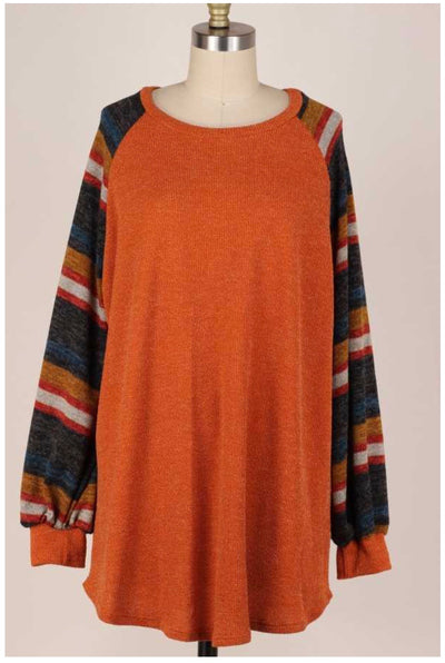 CP-F {Down The Lane} Burnt Orange Stripe Sleeve Contrast Top PLUS SIZE XL 2X 3X