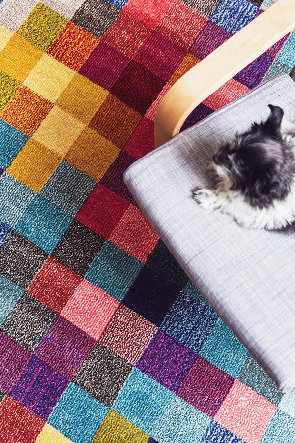 Gemini Revo Modern Rug Multi Coloured Feature