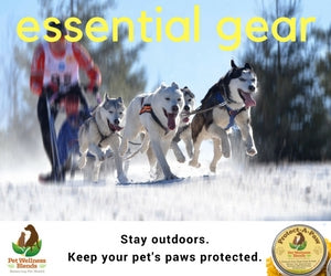 Protect your pets paws - Winter & Summer