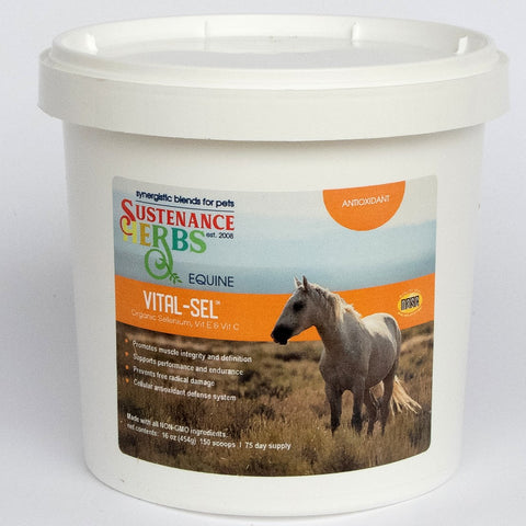 sustenance herbs for pets vital-sel organic formula for muscle  and nervous systems in horses