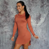 JULIA Turtleneck Long Sleeve Dress