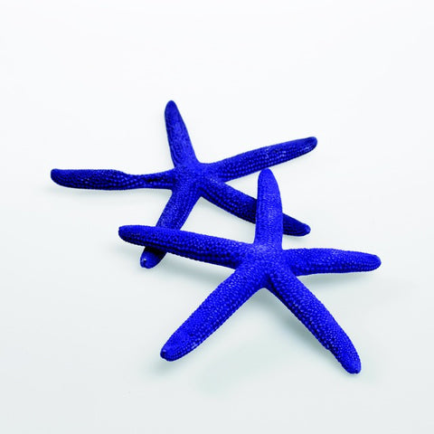 "22725.35 Starfish 4-6""x 10 Pcs - Purple - CS(24)"