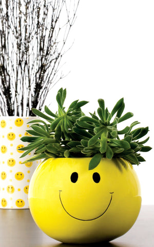 3-050PTR/1SM Smiley Face Bubble Vase