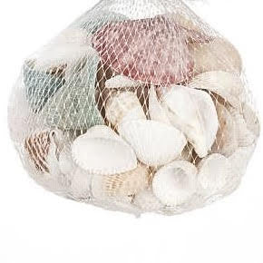 73242 Asst. Seashells 12 oz CS(6)