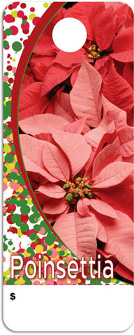 CT0025 Care Tag - Poinsettia