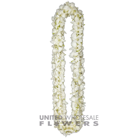 FRESH DOUBLE LEIS - WHITE