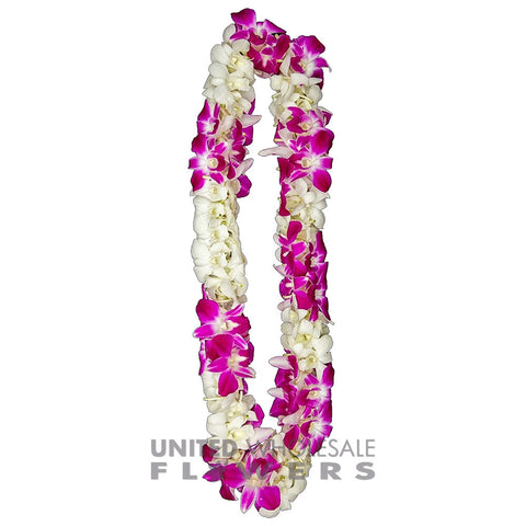 FRESH DOUBLE LEIS - SONNIA & WHITE