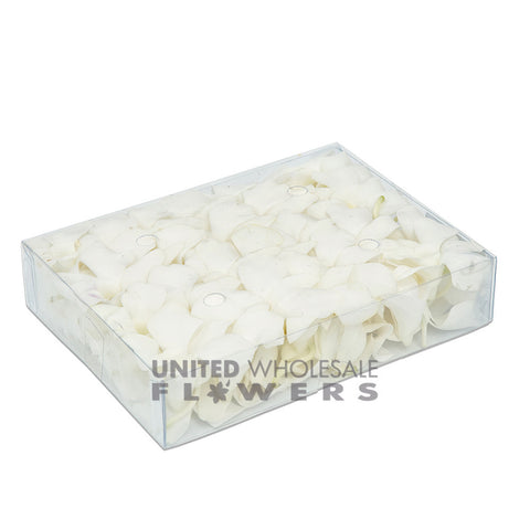 FRESH ORCHID HEAD - WHITE (50HEADS)