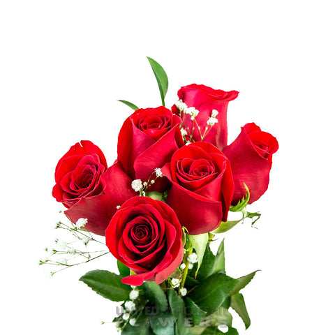 Rose Bouquet w/Gyp Red (1/2 Dozen)