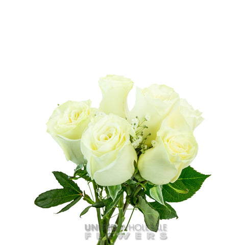 Rose Bouquet w/Gyp White (1/2 Dozen)