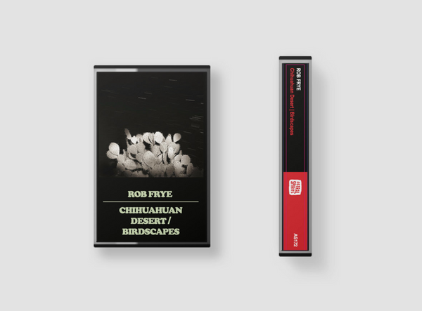 Chihuahuan Desert | Birdscapes on Cassette