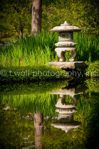 AI 010 - Reflection Pond
