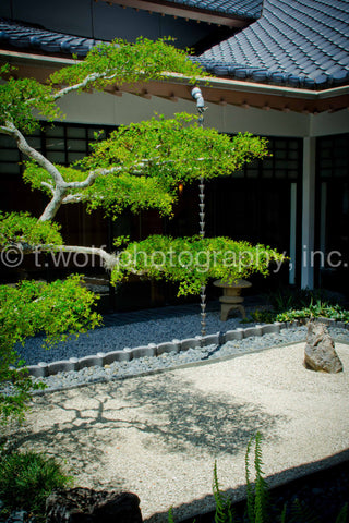 AI 045 - Japanese Courtyard