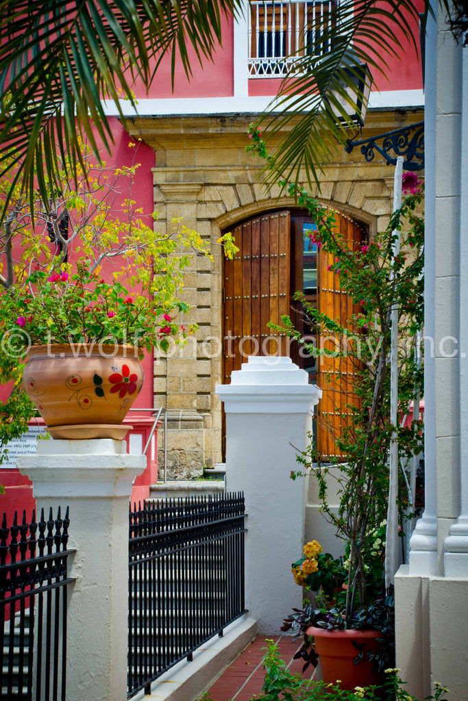 CB 040 - Old San Juan Garden Door