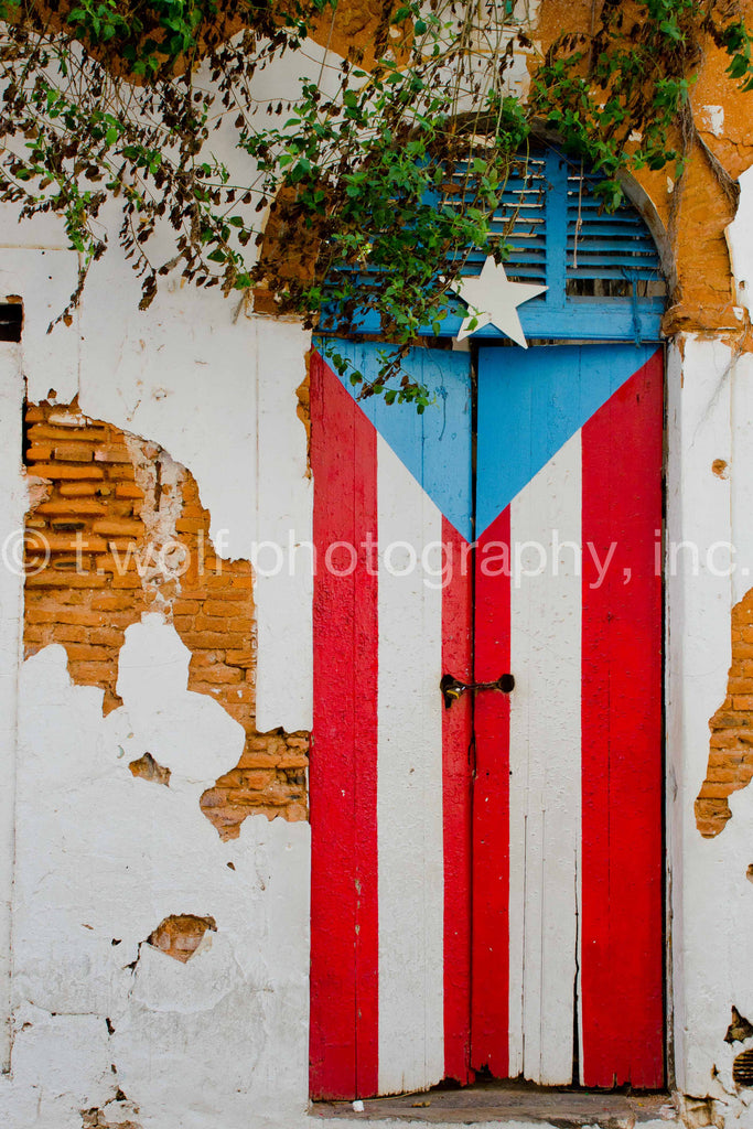 CB 044 - Old San Juan Flag Door