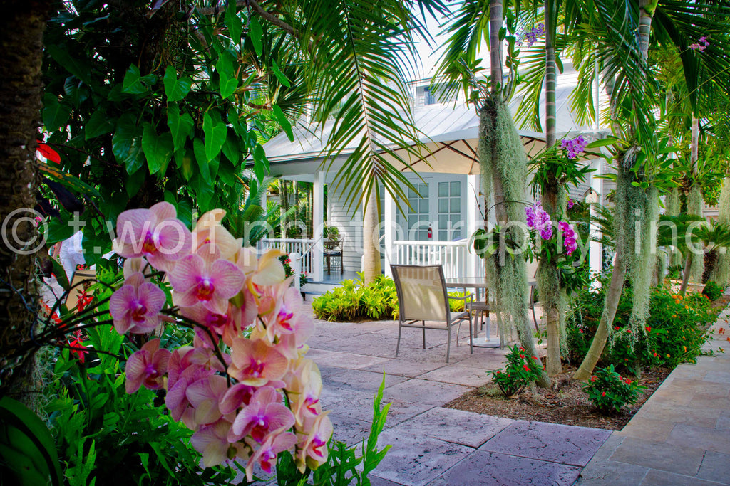 FL 014 - Key West Garden
