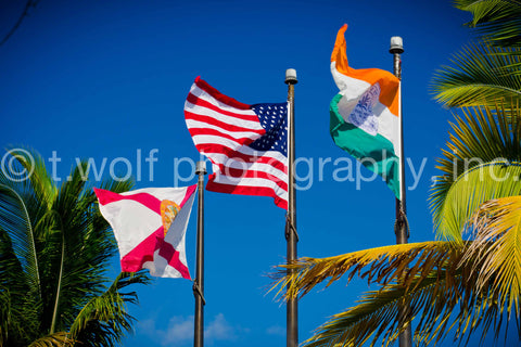 MIA 019 - Miami Flags