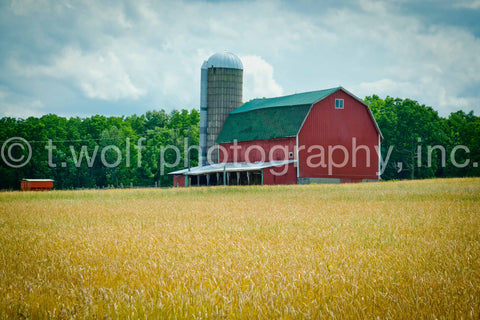 NE 002 - Wheat Field Barn