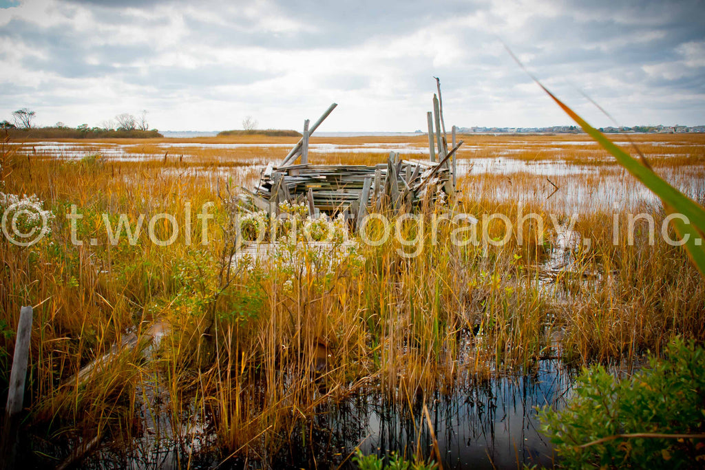 NE 014 - New Jersey Marsh Blind