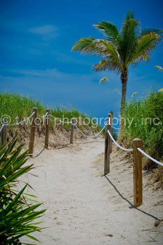 SB 025 -  South Beach Path