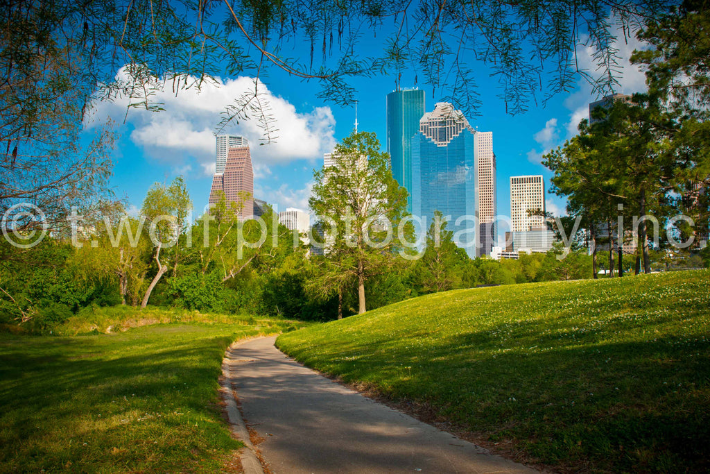 TX 006 - Houston Skyline