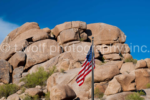 SW 052 - Arizona Desert Flag
