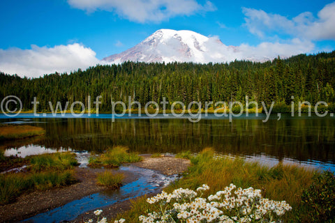 WC 001 - Mt. Rainier