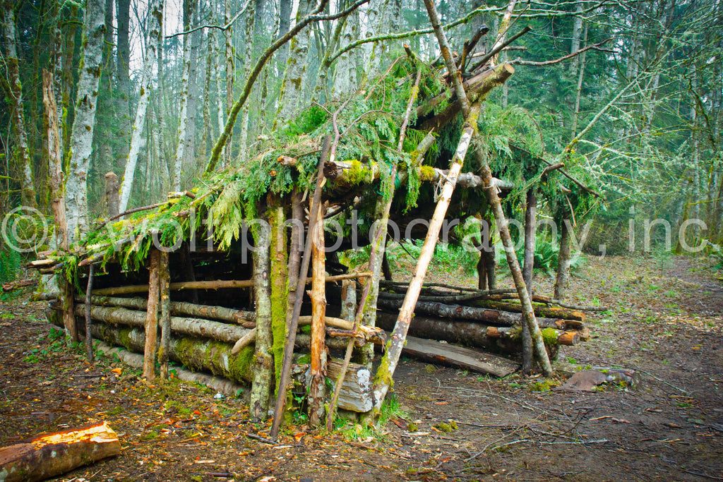 WC 019 - Rainforest Shelter