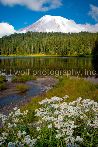WC 022 - Mt. Rainier Reflection Lake