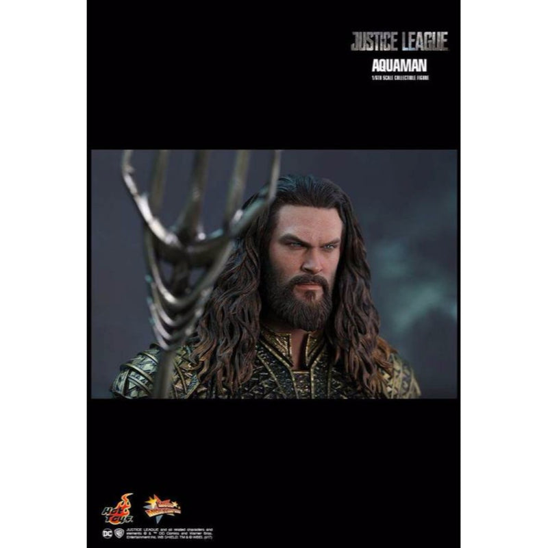Hot Toys – MMS447 – Justice League – 1/6th scale Aquaman