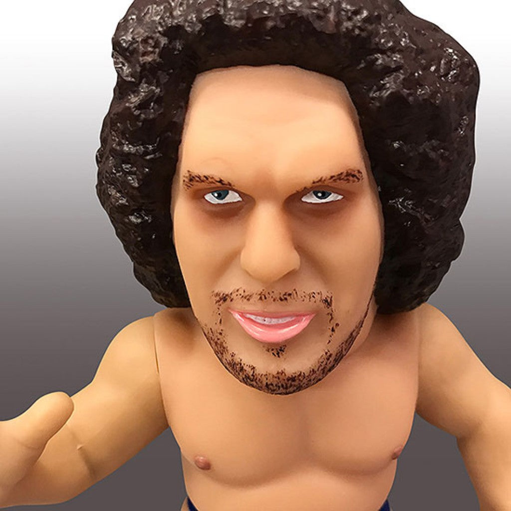 16 directions Andre the Giant WWE