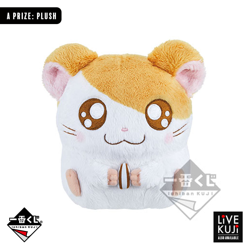 [IN-STOCK] Banpresto KUJI HAMTARO ~Purichu Bouquet~