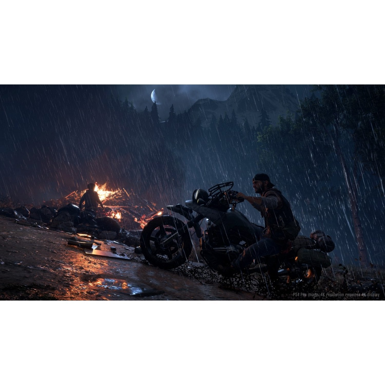 PS4 Days Gone *R3