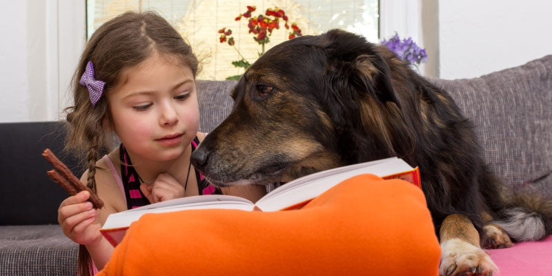 Dogs Can Help Children Read