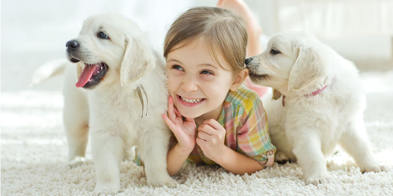 Pets Help Our Children Grow to Become Better Adults