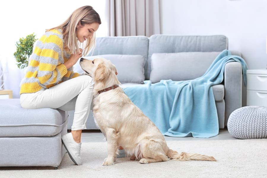 5 Easy Ways to Welcome Your Furry Friend Home