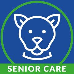 Senior Wellness