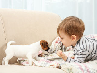 teaching children care for adopted pets