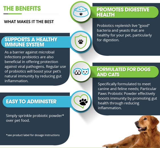 Probiotic powder dogs and cats