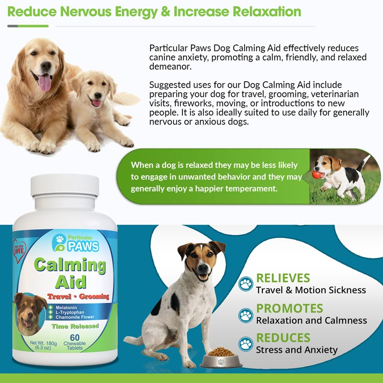 anxiety relief for dogs
