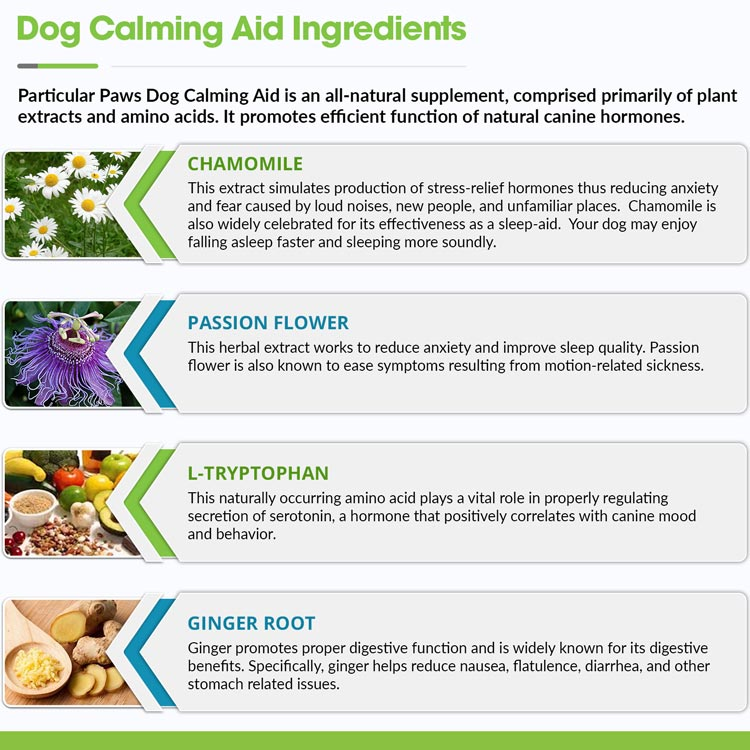 Natural Dog Calming Medication