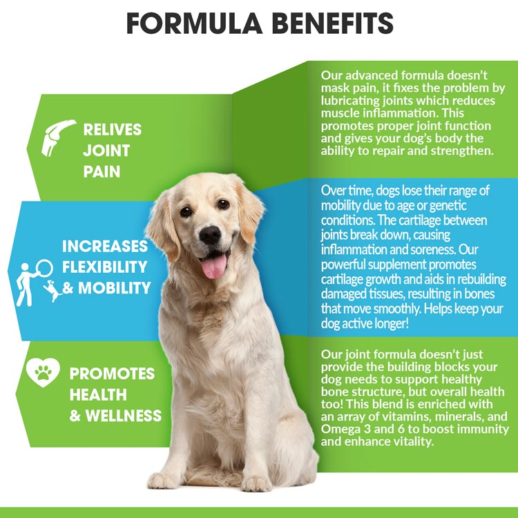 Joint and Hip Supplement for Dogs