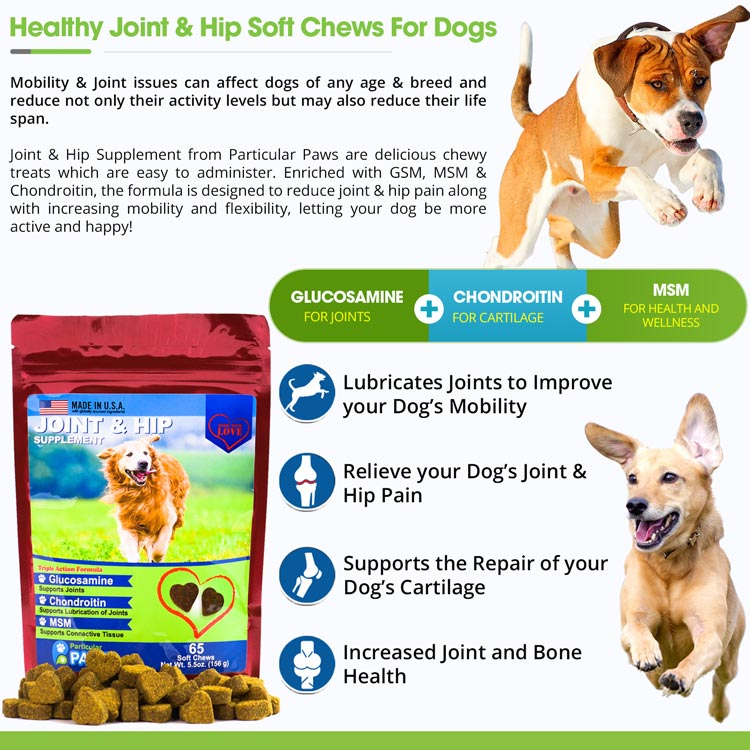 4X Joint and Hip Treats for Dogs